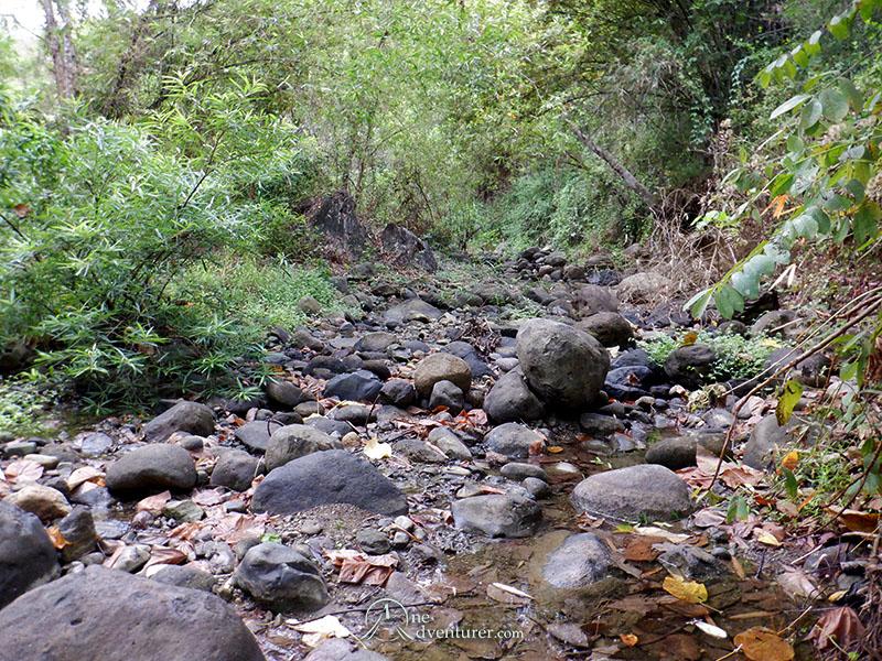 mt manalmon trail rocky river